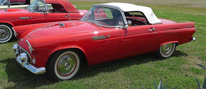 Deborah Frank's 1955 Thunderbird